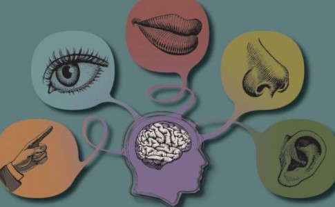 Με ποια σειρά χάνονται οι 5 αισθήσεις όσο μεγαλώνουμε ;